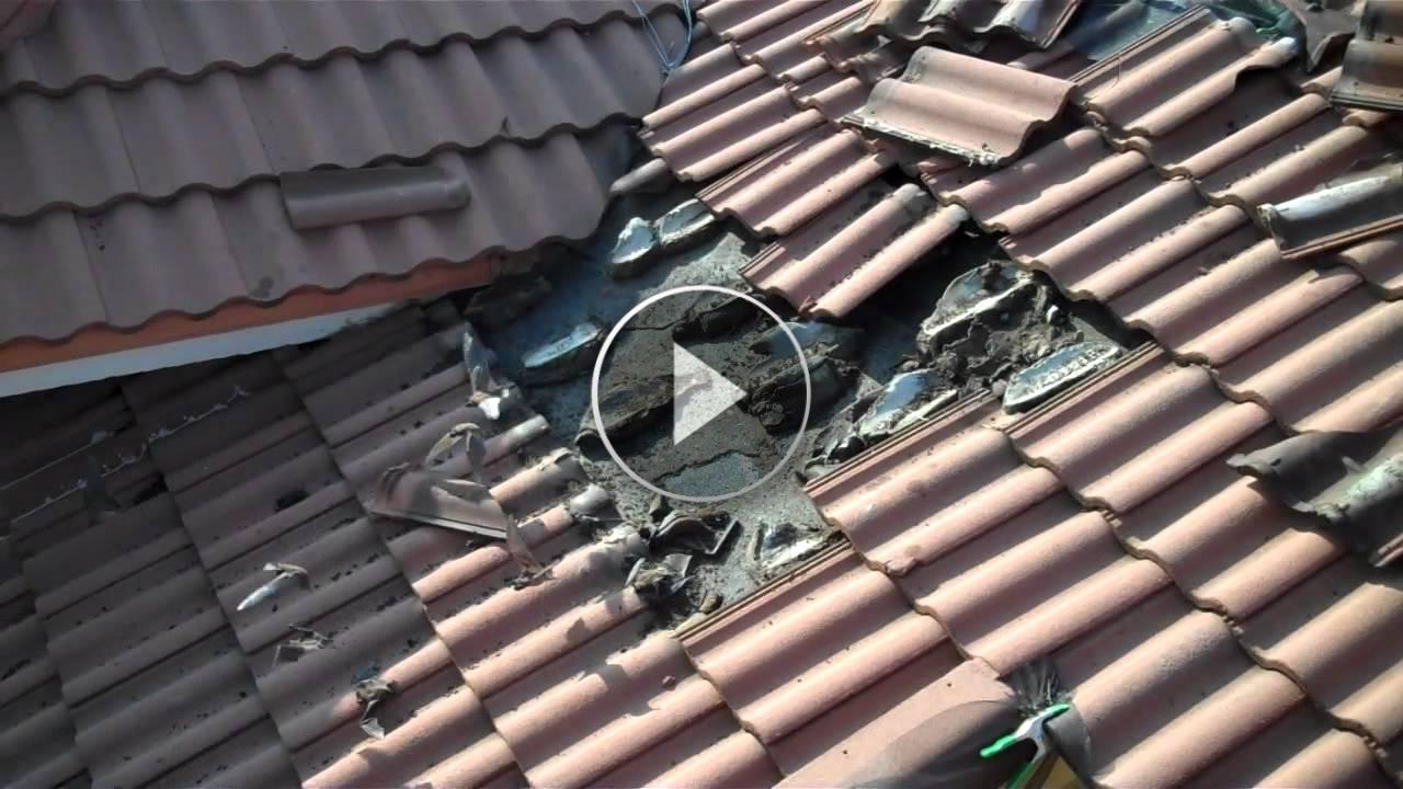 L'incredibile scoperta di questo signore sotto le tegole del suo tetto