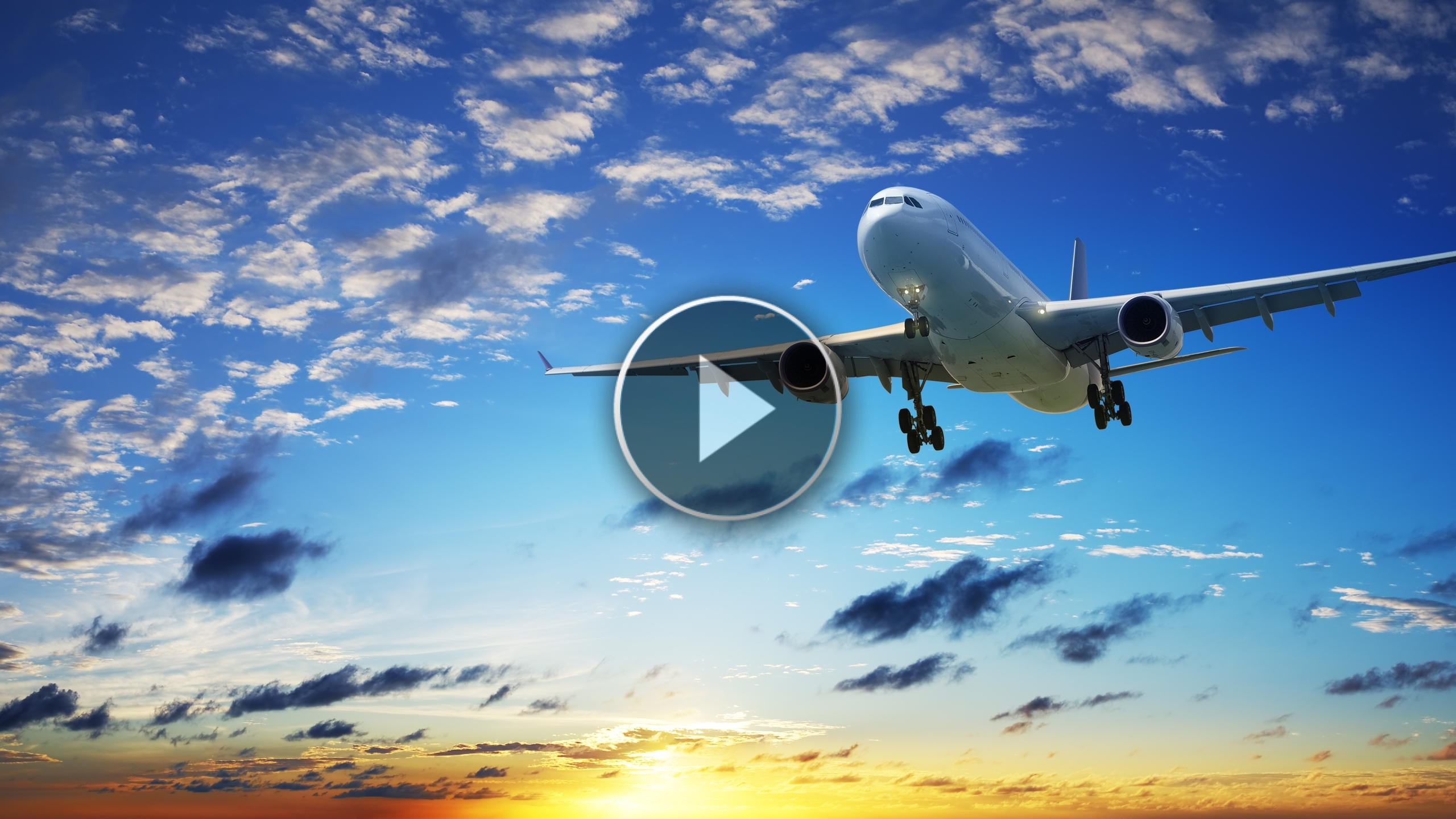 Che fine fanno i rifiuti a bordo di un aereo? Ce lo spiega questo video!