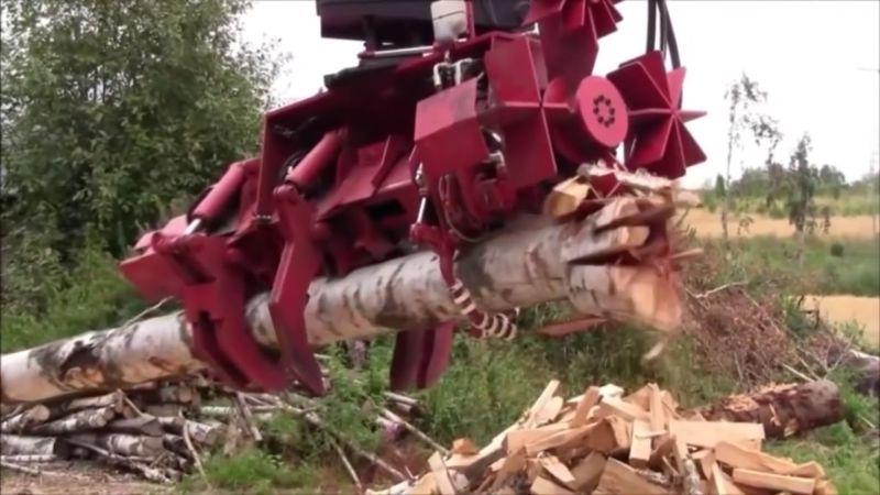 Vedono Una Strana Macchina nella Foresta, quando si avvicinano a questa bestia… WOW!!